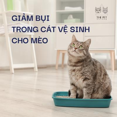 Mẹo hay Sen cần biết: Giảm bụi trong cát vệ sinh cho mèo