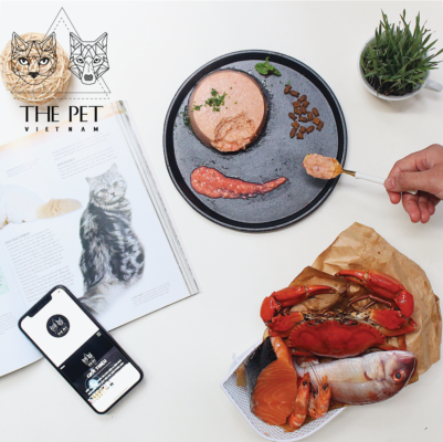 Bí kíp lựa chọn thức ăn cho chó sau triệt sản từ a-z